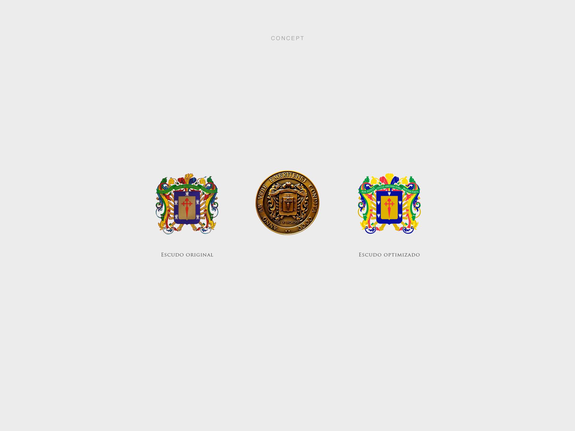 Jhonatan Medina Caguana_Alcaldia_IDEA_WEB