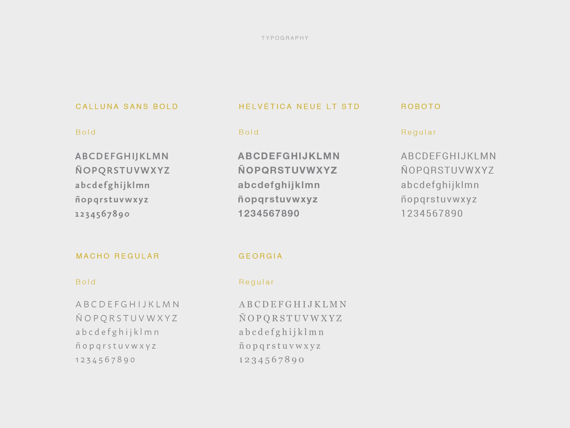 Jhonatan Medina Caguana_Brendan Meridian_Typografia_Work